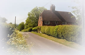 Canterbury Countryside Photograph